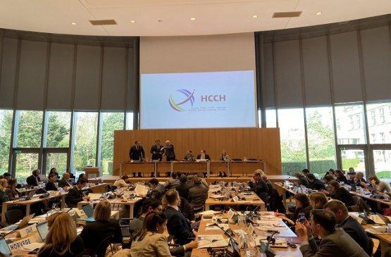 Узбекистан присоединился к Гаагской конференции по международному частному праву