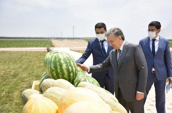 Шавкат Мирзиёев посетил Папский район Наманганской области