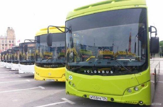 На автобусах из России едут на родину около 2500 граждан Киргизии