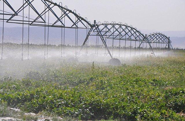 ФАО окажет содействие фермерам Туркменистана в борьбе с засухой