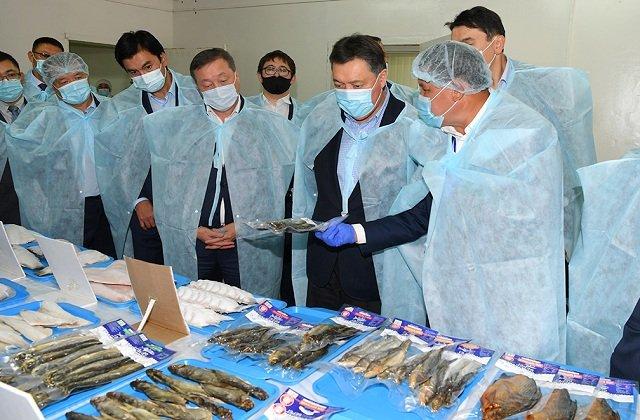 Премьер Казахстана поручил совершенствовать рыбную отрасль
