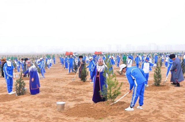В Туркменистане в этом году посадят 25 млн деревьев