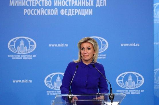 Представитель МИД России назвала поддержку молдавского кандидата Германией вмешательством