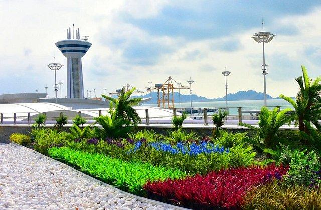Туркменистан поучаствовал в вебинаре по организации безопасности морских портов