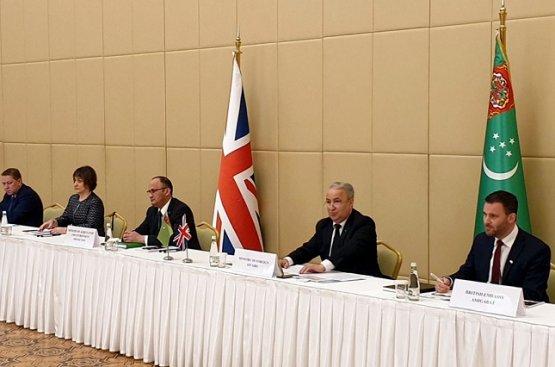 Туркмено-британские эксперты обсудили способы решения климатической проблематики