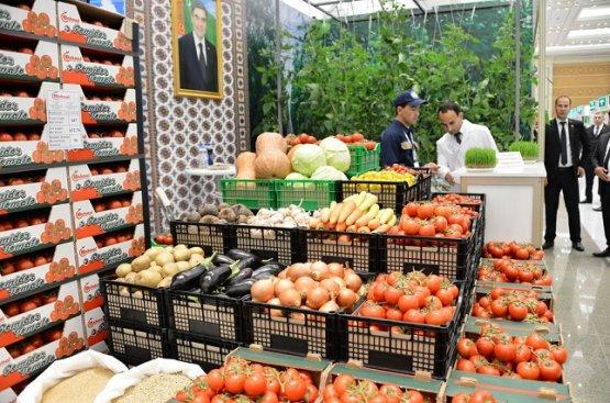 При поддержке руководства страны частный сектор Туркменистана вышел на новый уровень