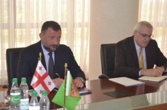 Глава МИД Туркменистана принял завершающего дипмиссию посла Грузии