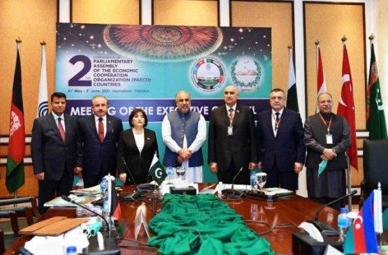 Депутаты Туркменистана поучаствовали на конференции парламентской ассамблеи ОЭС