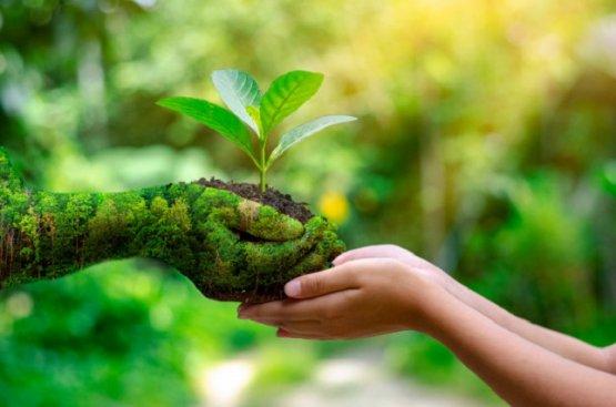 В Туркменистане прошла научная конференция, посвящённая Всемирному дню окружающей среды