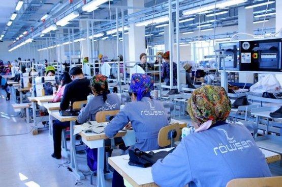 Частный сектор Туркменистана обеспечил 600 жителей работой