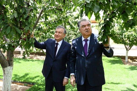После посещения аграрной выставки президент завершил свой рабочий визит в Таджикистан