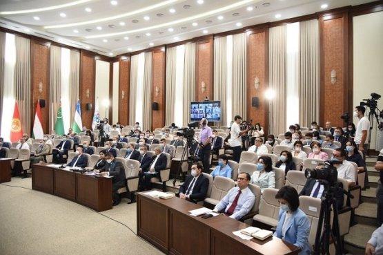 Парламентарии стран СНГ обсудили взаимосвязь Центральной и Южной Азии