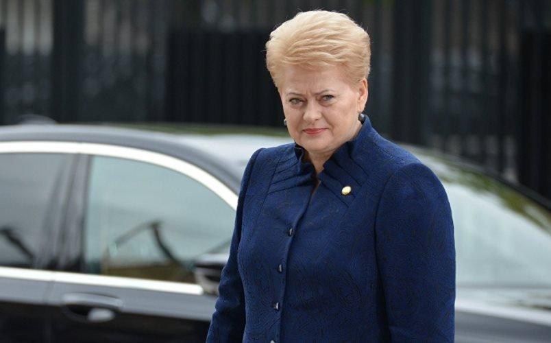 Президент Литвы: Украине предстоит продолжительный путь в EC
