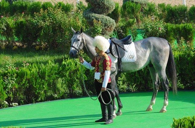 Праздник туркменского скакуна: вАшхабаде выберут лучшего коня